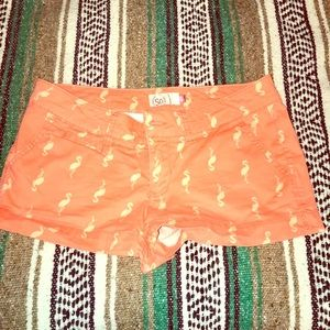 Cute shorts with flamingo canvas/target